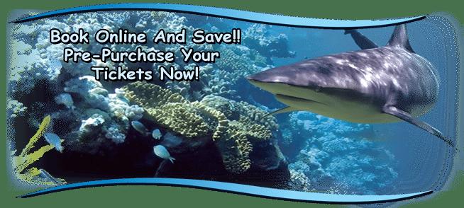 header5 - San Antonio Aquarium