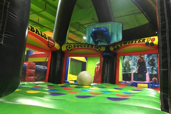 iguana_jump_3